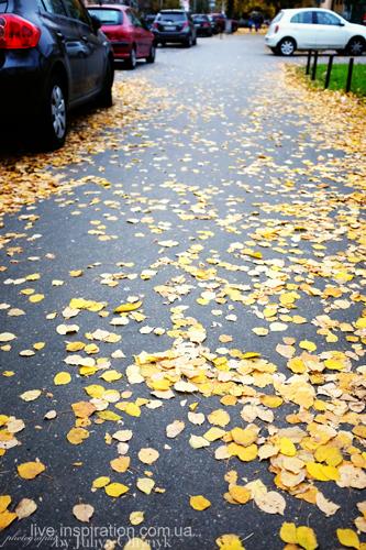 15.10.2013_autumn_x100s_12