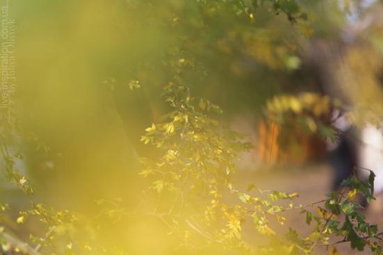 20.10.2013_park_pobedy_13
