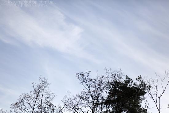 20.10.2013_park_pobedy_33