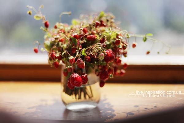 21.06.2014_strawberries_morning_1