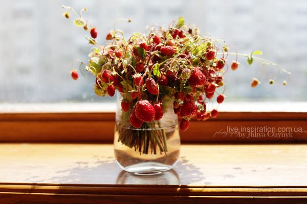 21.06.2014_strawberries_morning_2
