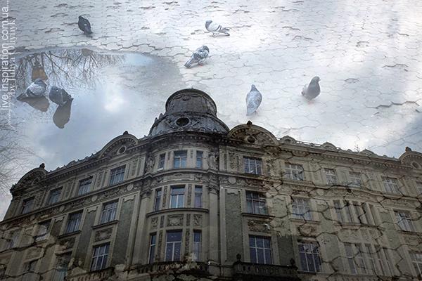 6.04.2015_Lviv_10